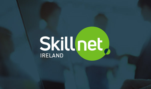 INFOGRAPHIC: Skillnet Ireland Annual Report 2019