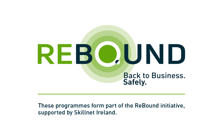 Logo of Skillnet ireland Rebound project