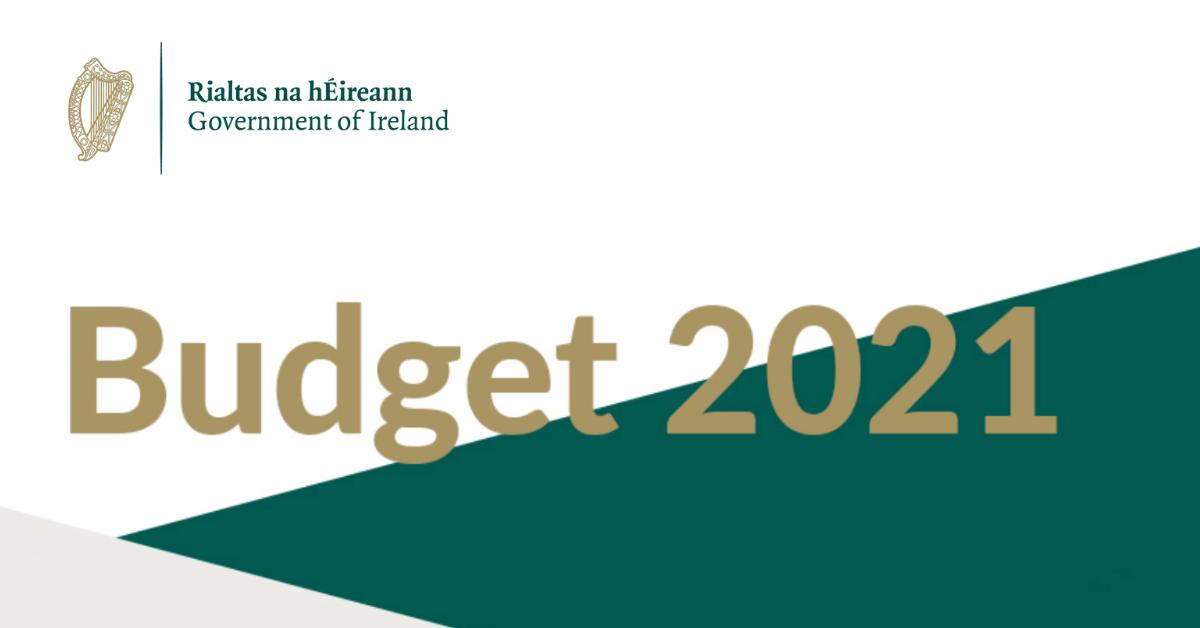 budget 2021 - photo #9